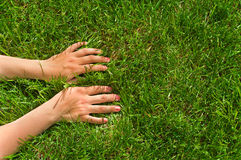Hands in grass. Woman`s hands on green grass. Palms down Royalty Free Stock Photos