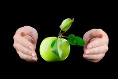 Hands and green apple Royalty Free Stock Photo