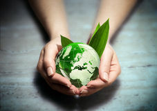 Hands with green eco World globe - europe. Whit leaf stock photo