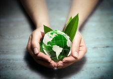 Hands with green eco World globe - Usa. Whit leaf royalty free stock images