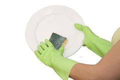 Hands in green gloves. Wash  white plate Royalty Free Stock Photo