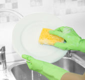 Hands in green gloves wash  white plate Stock Images