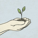 Hands with green sprout and dirt heap Royalty Free Stock Photos