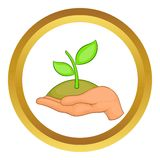 Hands with green sprout vector icon Stock Photo