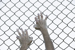 Hands gripped in desperation on fence. Bleached filtered image of Hands in desperate grip on mesh wired fence, symbolising captivity, hopeless, kidnapping Royalty Free Stock Photography