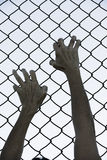 Hands gripped onto prison mesh wire fence. Bleached filtered image of Hands in desperate grip on mesh wired fence, symbolising captivity, hopeless, kidnapping Stock Image