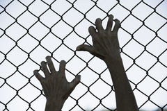 Hands gripped onto prison mesh wire fence. Bleached filtered image of Hands in desperate grip on mesh wired fence, symbolising captivity, hopeless, kidnapping Royalty Free Stock Photography