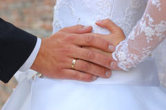 Hands of the groom and the bride. With care about each other Royalty Free Stock Photos