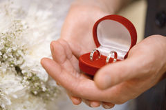 Hands of groom and bride hold casket with rings Stock Image