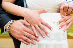 Hands of the groom and bride with rings Royalty Free Stock Photography