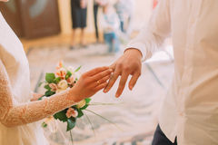 Hands of the groom and bride wearing ring on finger, wedding ceremony in registry office, close-up Royalty Free Stock Photo