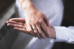 Hands of the groom and bride. Wedding rings on a hand of the groom and the bride Stock Photography
