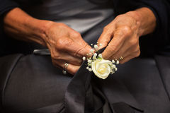 Hands of groom's mother. Hands of mother who sew flowers on the groom's tie royalty free stock photos