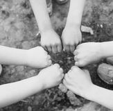 Hands a group of children Stock Image