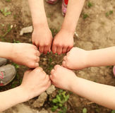 Hands a group of children Stock Photo