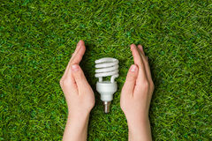 Hands guarding energy saving eco lamp close up Stock Image