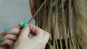 Hands hairdresser braid dreadlocks stock footage