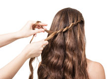 Hands hairdresser braided lock of the girl with long hair isolated on white . Stock Images