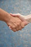 Hands in handshake. Two people shaking hands in agreement Stock Images