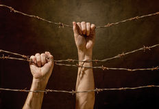 Hands hanging on the barbed wire Stock Photography