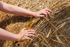 Hands on hay bale Royalty Free Stock Image