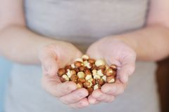 Hands with hazelnuts Royalty Free Stock Photo