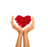 Hands with heart Royalty Free Stock Photo