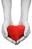 Hands with heart Stock Images