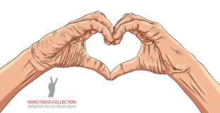 Hands in heart form, detailed vector illustration. Stock Photography