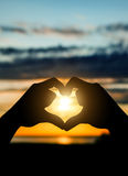 Hands in Heart Shape. On the Sunset Royalty Free Stock Photos
