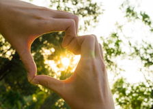 Hands in Heart Shape. On Tree and Sunset Background Stock Photos