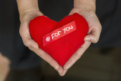 Hands and heart for valentine day.  royalty free stock images