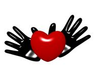Hands and heart on a white background. Black hands hold heart on a white background Royalty Free Stock Images