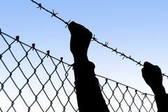 Hands held behind barbed wire Stock Photo