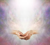Hands held in Peaceful Meditation Stock Photo
