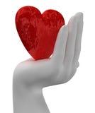 hands hjärta Royaltyfri Fotografi