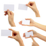 Hands hold business cards collage on white backgro Royalty Free Stock Photo