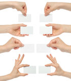 Hands hold business cards collage. On white background Stock Photography