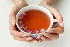 Hands that hold a cup of tea Stock Image