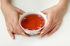 hands that hold a cup of tea Royalty Free Stock Photo