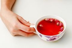 hands that hold a cup of tea Stock Photography