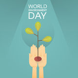 Hands Hold Growing Tree World Environment Day Earth Protection Royalty Free Stock Images