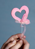 Hands hold pink valentine hearts on blue background Royalty Free Stock Photo