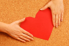 Hands hold red heart Royalty Free Stock Photos