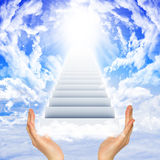 Hands hold stairs Royalty Free Stock Image