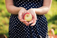 Hands holding apple Stock Images