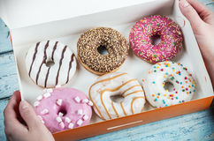 Hands Holding Assorted Donuts Stuffed Stock Photo