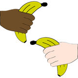 Hands holding bananas Royalty Free Stock Image