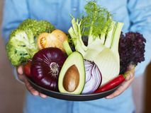 Hands holding big plate with different fresh farm vegetables. Au royalty free stock photos