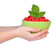 Hands holding bowl with raspberries Stock Photography